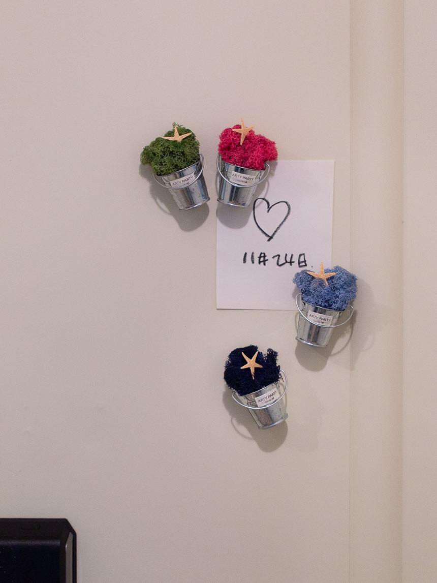 스칸디아모스 미니화분 냉장고자석 마그넷 모스 천연이끼 공기정화 습도조절 (6컬러) - 아티파티, 6,000원, 조화, 부쉬