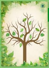나무 포스터 5장+나뭇잎 스티커 Set - 회복적 생활교육 에듀피스 교구