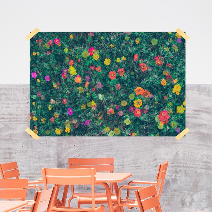 스마트 스토어에서 구입가능한 상품입니다. 花가 난다.정원 (종이포스터 300X200~900x600mm)