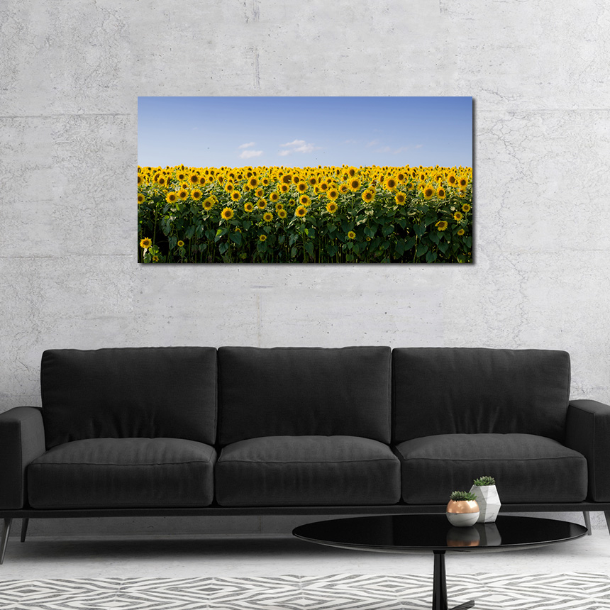 현관 인테리어 해바라기 풍경화 액자 (50x60cm) - 아트빌리지, 54,900원, 홈갤러리, 캔버스아트