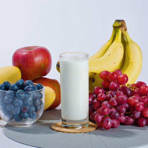 파주 상생마켓,요거단백 그릭요거트단백질 농축유청분말 운동후 저분자단백질 프로틴파우더 쉐이크 880g