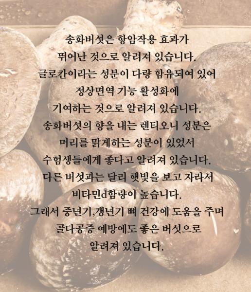김포시 사회적경제마켓,송화버섯 1kg 친환경 철원 청청지역