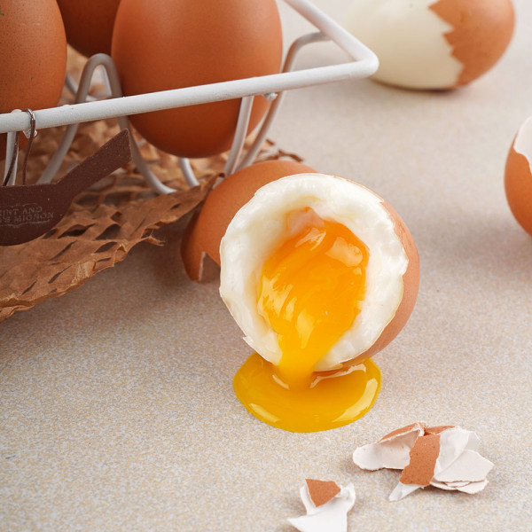 고맙다양양몰 - 농산물직거래쇼핑몰,강원도 양양 자연방목 유정란 계란 40구