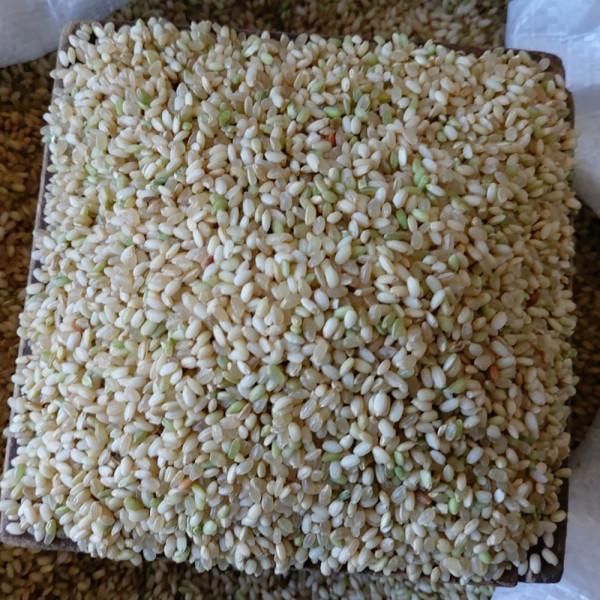 고맙다양양몰 - 농산물직거래쇼핑몰,양양 맛있는 쌀(맛드림쌀) 10kg,찹쌀(누룽지향현미찹쌀) 10kg