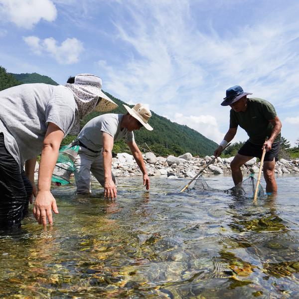 강원도 양양 자연속 힐링체험 물고기잡이