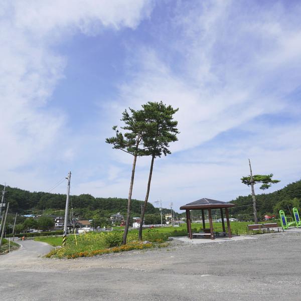 강원도 청정지역 양양 38평화마을 옥수수체험 캠핑 야영지